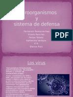 Microorganism Os 21