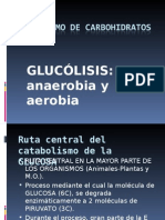 glucolisisanaerobiayaerobia-130929183859-phpapp01