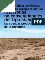 Caracteristicas de Shgfgale en Argentina