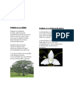 10 poemas de guatemala, ilustrados.docx