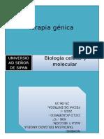 Investigación terapia geneica