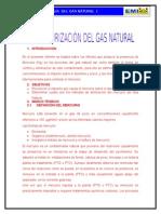 Informe Terminado Desmercurizacion Del Mercurio