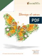 SIDO Annual Report 2013