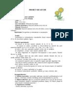 proiectdelec_ie10_30didactic