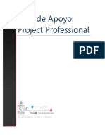 Project Profesional