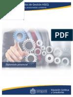 Programa académico HSEQ 1-2015.pdf