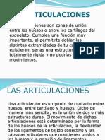 LAS ARTICULACIONES.ppt