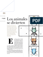 David Graeber - Los Animales Se Divierten