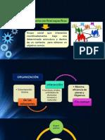PRESENTACION ORGANIZACION.pdf