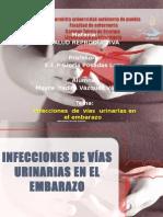 90358231 Infecciones de Vias Urinarias Mayra Yadira Vazquez Vazquez
