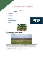 Aprovechamiento y Efecto Del Escobajo de Palma Aceitera