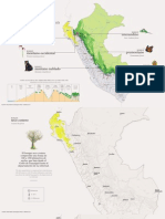 Los principales tipos de bosques del Perú