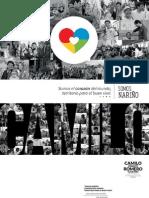 Programa de Gobierno -Camilo Romero