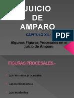 Cap Xii Amparo Figuras Procesales en El Juicio 140809