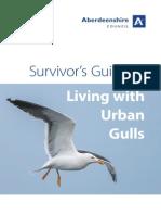 Seagull Nuisance Leaflet