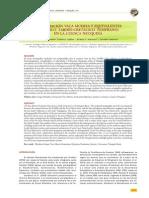 LA FORMACIÓN VACA MUERTA Y EQUIVALENTES (JURÁSICO TARDÍO-CRETÁCICO TEMPRANO) EN LA CUENCA NEUQUINA