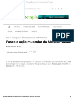 Fases e Ação Muscular Da Marcha Humana _ Faça Fisioterapia