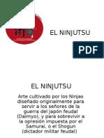 El Ninjitsu