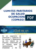 Comites Paritarios de Salud Ocup.1