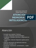 Atención, Memoria e Inteligencia