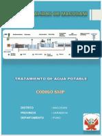 Proyecto Final de Aguas 1 (1)