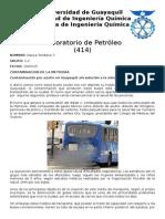 Contaminacion de la metrovia.docx