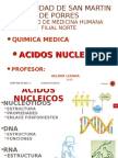 2.8 Ac.nucleicos 15 i Chi (1)