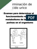 Determinación de acido urico