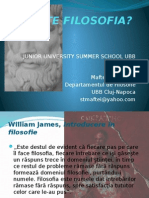 CE ESTE FILOSOFIA Curs Junior Summer School 2011.pptx
