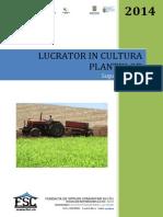 Lucrator Cultura Plantelor