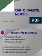 2013-10-07-semiologie-stagiu-2-1.ppt