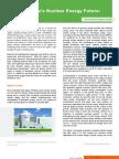 Southeast Asia's Nuclear Energy Future