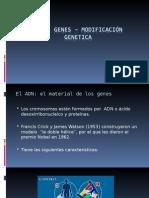 Tema Genes y Manipulación Genética