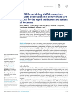 GluN2B-containing NMDA receptors regulate depression-like behavior and are critical for the rapid antidepressant actions of ketamine.