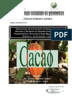 PIP CACAO yanatile para DGPI.pdf