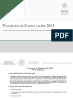 01 Programa de Capacitacion 2014 Perfil de Jueces