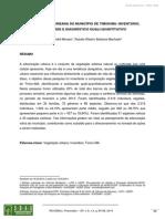 A ARBORIZAÇÃO URBANA DO MUNICÍPIO DE TIMON/MA