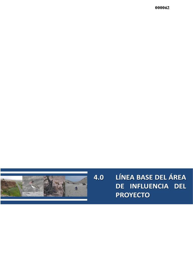 42f20b9497a1f CAP. 4.0 Línea Base