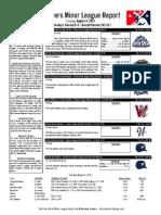 Minor League Report 15.08.04.pdf