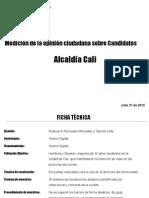 ENCUASTA ANALIZAR JULIO 31.pdf