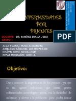 Rdr Priones