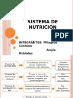 Sistema de Nutrición Angie y Mili