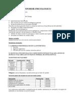 informe vocacional