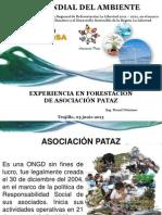 Forum Asociacion Pataz.pdf