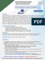 BDSaS 2015_2016.pdf