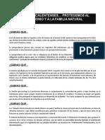 Desplegado Prensa Julio 2015 FINAL