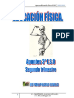 Apuntes EF3ºESO_segundo trimestrex