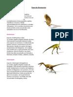 Tipos de Dinosaurios 5 BASICO