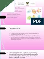 Presentacion de Fermentacion Acido Citrico