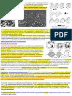 Tema1.DiagramaFeC.transformaciones REVENIDO